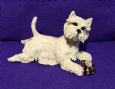 Eve Pearce Hand-Made Model - Westie with Slipper